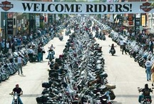 My Wild Side / I live to ride and ride to live!