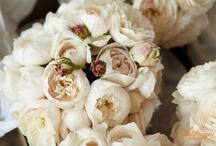Flowers - love!