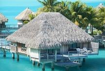 Podróże / Zmiana otoczenia, miejsca pobytu, choćby na chwilę... Uwielbiamy podróżować i marzyć o kolejnych, odległych zakątkach świata. Cieszymy się z każdej chwili, korzystając z uroków podróżowania. Szukamy inspirujących miejsc, które poszerzają horyzonty. Przyłącz się do dzielenia się naszymi skarbami... http://www.scoupon.pl/kategoria/turystyka