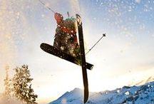 Vice (ski) / by Emily Jordan-Wilson