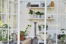 INDOOR GARDEN AND GREENHOUSE