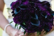 Dark + Mysterious + Jewel Tones / by Passionate About Peonies