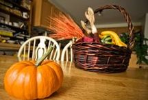 Autumn Decor / A collection of home and outdoor decor ideas to get your home ready for this beautiful fall season!