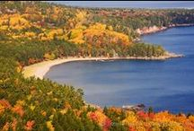 Michigan's Fall Colors / by Colleen Owens