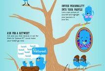 Website/SEO/Social Media / SEO and Social Media Information