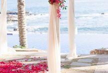 Ideas for Amanda's wedding!