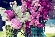 Flowers / by Rebecca Demek