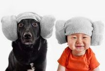 essence of cuteness! / so cute, you can hardly stand to look!!