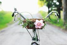 Bicicletas / by Camila Chenow