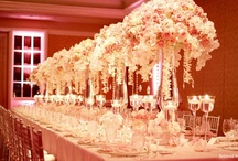 Dream Wedding / by Alexandra Danos
