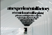 Office Design / by Jacqueline Archer