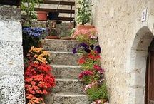 Small & Shady Garden Inspiration / Ways to maximise your small garden and plants for shady gardens. How to add colour and texture with plants and garden accessories