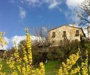 Italia in viaggio! | Travelling in Italy / Dal nord al sud, scorci e istantanee dall'Italia. #italy
