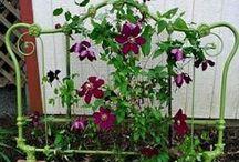 Gardening / by Lisa Hebert