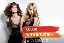 Color with Intuition  / A revolution in hair coloring....