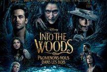 Into The Woods (Disney)