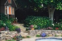 Terraced Garden / by Lauren Lynch