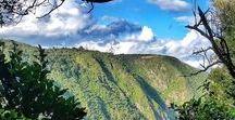 T R A V EL | neuseeland - aotearoa / Neuseeland, ein Traumland auf der anderen Seite des Planeten. Inspiration für eine Traumreise, wie wir sie machen durften, gibt es hier.