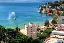 T R A V E L | wellington, new zealand / Die schönste kleine Hauptstadt der Welt - auf unserer Neuseelandreise haben wir uns in Wellington vom Fleck weg verliebt! Tipps und Eindrücke aus einer wunderschönen Stadt am anderen Ende der Welt