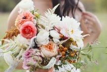 | WEDDING BLISS | / by Lauren Batalis