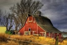 Barn Love - Let's Go RED! / by Denise {First a Dream}