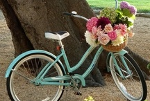 Bicycles | Robin Shea Rides / by Robin Shea -80/20 Healthy Lifestyle Reinvention Cooking 80/20