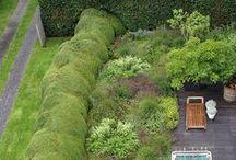 Trädgårdsdesign / Garden design