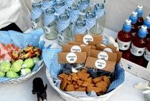 theme partys with Worawo / Hier findest du tolle Ideen für deine nächste Party ob Kindergeburtstag oder der nächste runde Geburtstag, hier findest du die richtigen Knaller für dein Thrma.
