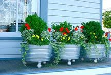 Container Gardening / by Olivia Fisk