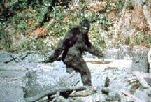 BiG FooT~YeP, I BeLieVe THey eXiST / Big foot, Sasquatch, Yeti, Yahoo and other monsters too!