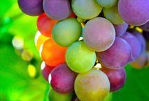 Grapevine / Green & Purple color scheme