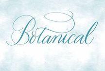 Botanical / Floral inspiration.