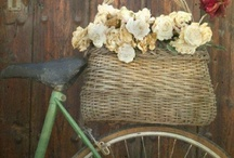 { bikes with baskets } / Cruisin' / by Summertime Cottage
