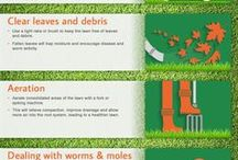 How To / Practical gardening & lawn care tips and advice