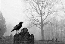 Is it strange to love cemeteries? / ANY & ALL OLD Cemeteries. / by Cathy Anderson
