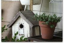 { bird cottages } / I enjoy tiny birds so much .... / by Summertime Cottage