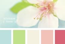 Color cues / by Ursula Duncan Board