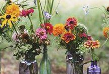 flower power / by Cynthia Monroe