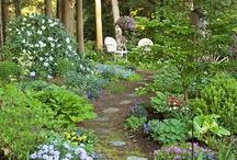 garden delights / by Cynthia Monroe