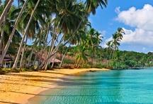 ✿*゚'゚・✿ Dreams...Carribean & more...♥ / ♫♥♫♥ Happy Pinning ♥ Karin ♥♫♥♫♥  / by ~✿~  Karin D.~✿~