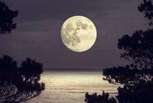 Moon / by Rikki Fowler