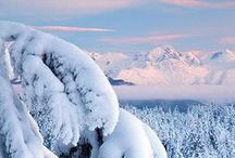 Winter / by Rikki Fowler