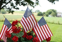let's celebrate the 4th of july / by Cynthia Monroe