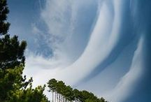 Clouds / by Rikki Fowler