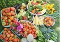 Veggie Lovin Fool / Food Ideas / by Farmer Chelle