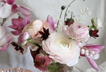 Flowers <3 / by MaraMay Baca
