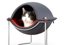 Hepper Grey Cat Beds / Designer Grey Cat Beds for your Modern Home. Your Cat will Love them! Learn more and experience the best.