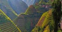 Travel | Asia