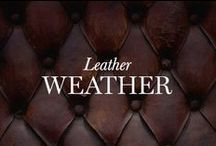 Leather Weather / Leather is always trendy. find your leather wear for the season: coat? skirt? shoe? pants? Buy them all: http://www.elietahari.com/ / by Elie Tahari