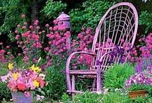 Splendor In The Garden / by Sandee Carranza